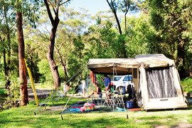 minnie_camping-gallery1300_Jul30162829.jpg image